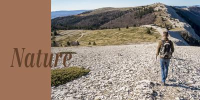Haute provence tourisme oti pays de forcalquier montagne de lure - Office du tourisme forcalquier ...