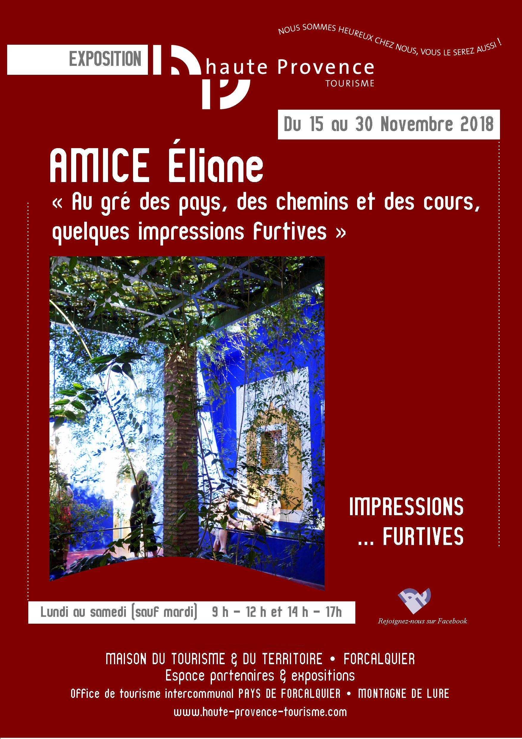Affiche A3 rouge Eliane AMICE