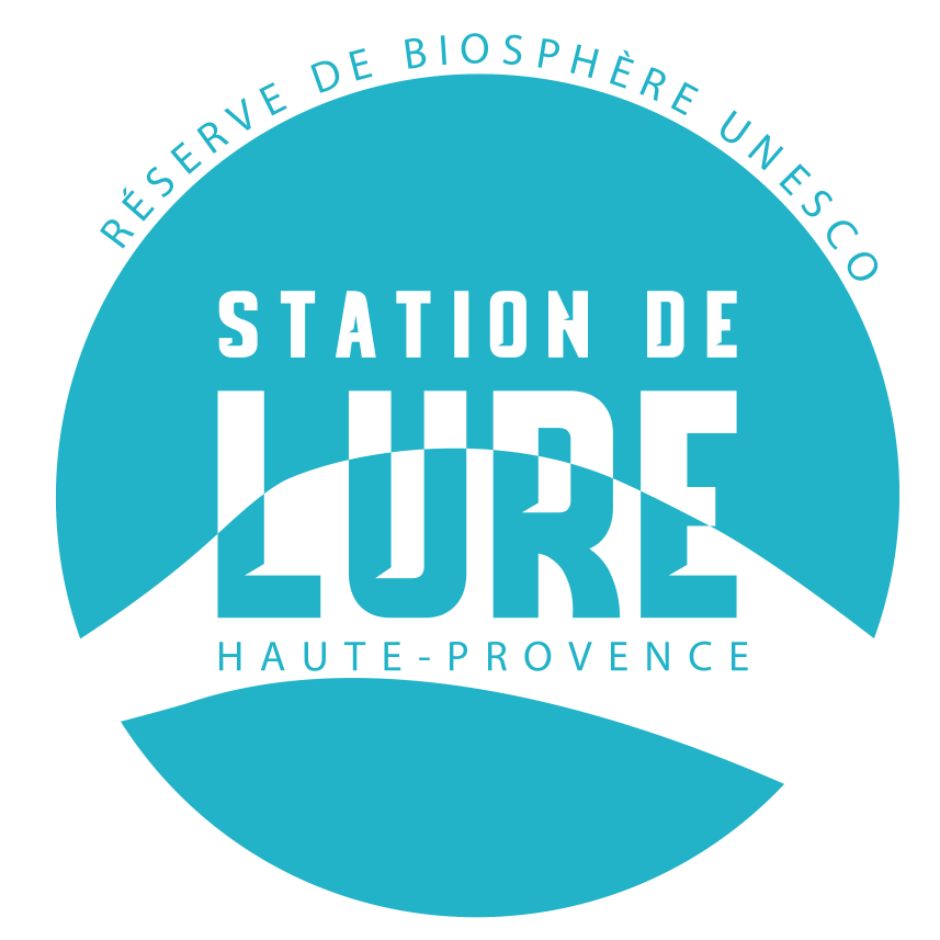 logo station lure